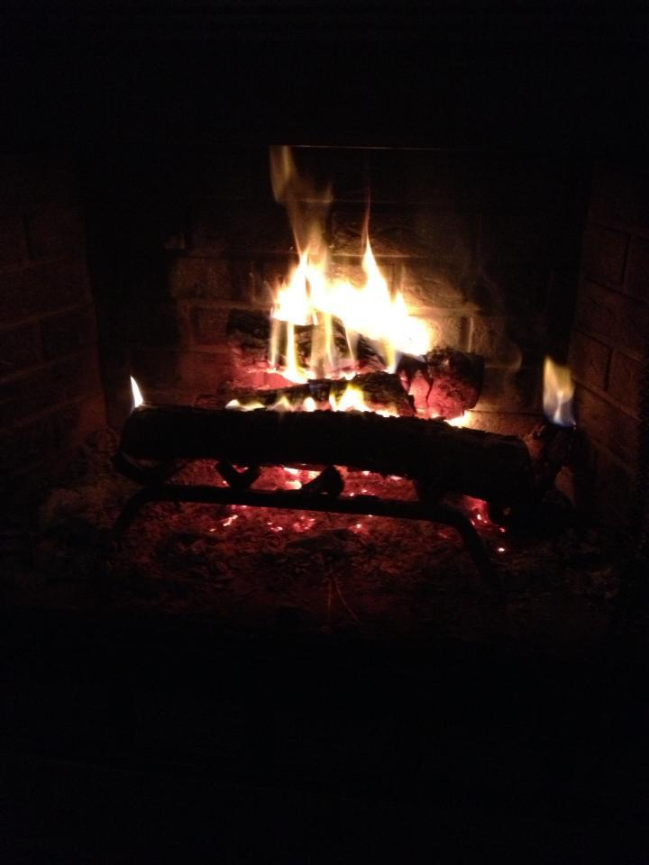 FIRE Place logs